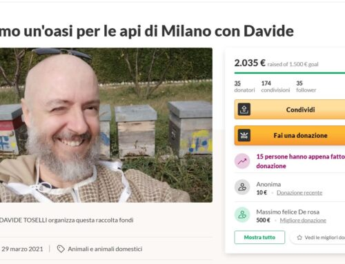 Crowdfunding per le api e Social Media